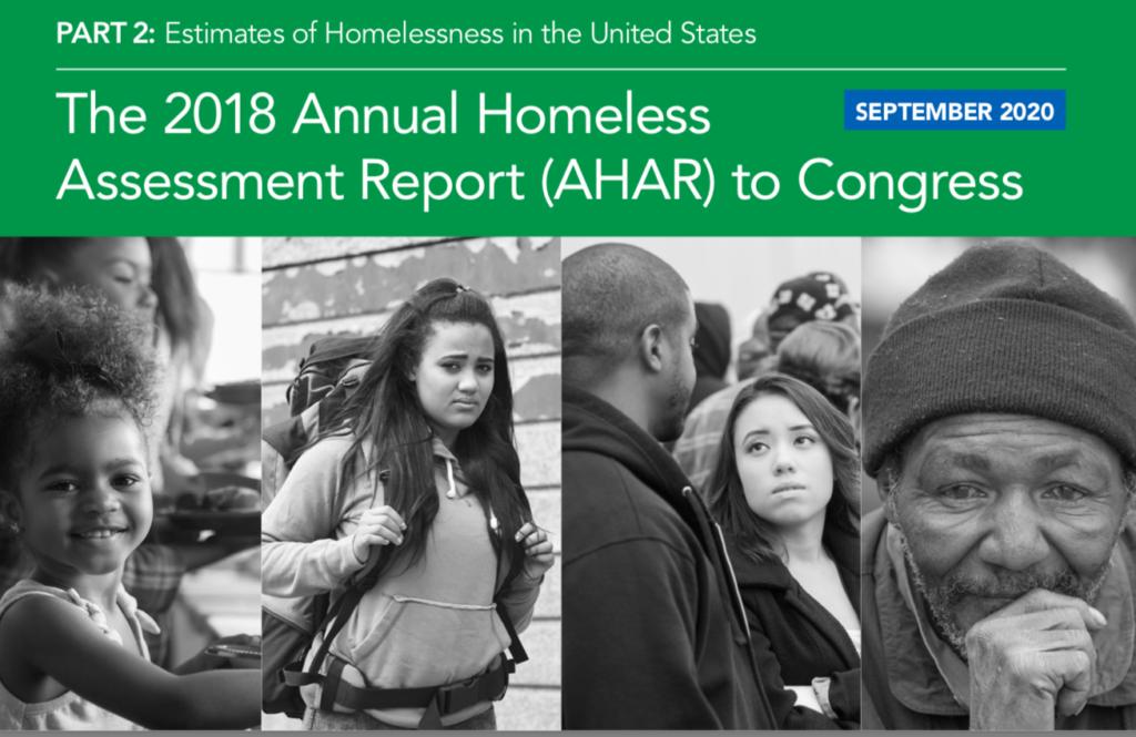 2018 AHAR Part 2
